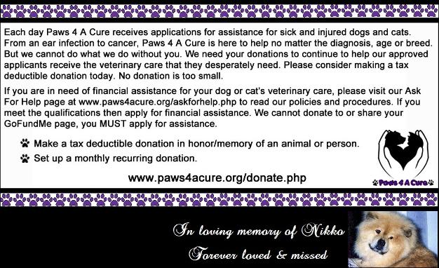 Paws 4 A Cure is an all-volunteer 501(c)(3) nonprofit